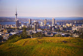 New Zealand skyline — Stock Photo