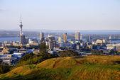 Auckland city — Stock Photo