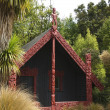 New Zealand Marae — Stock Photo