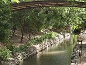 桥与河 — 图库照片