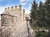 Walking inside Ancient Wall of Avila — Stock Photo