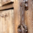 Old door — Stock Photo #10226515