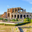 Royalty-Free Stock Photo: Capua amphitheatre 06