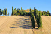 Podere in fall 26 — Stock Photo