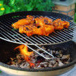 Foto Stock: Grilling chicken 13