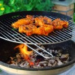 Stock fotografie: Grilling chicken 13
