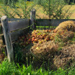 Stock Photo: Compost pile 09