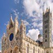 Siena cathedral 03 — Stock Photo