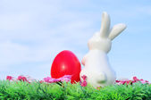 Easter bunny on flower meadow 02 — Stock Photo