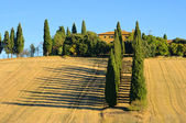 Podere in fall 21 — Stock Photo