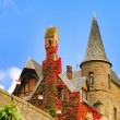 Cochem Castle 13 — Stock Photo
