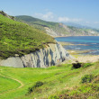 Costa Vasca near Zumaia 23 — Foto Stock