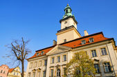 Jelenia Gora townhall 01 — Stock Photo