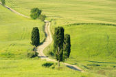 Tuscany hills 20 — Stock Photo