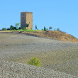 Stock Photo: Torre Tarug02