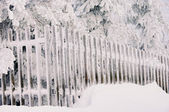 Fence in winter 02 — Stock Photo