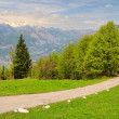 Stock Photo: Monte Baldo 09