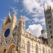 Siena cathedral 02 — Stock Photo