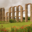 Royalty-Free Stock Photo: Merida Aqueduct 01