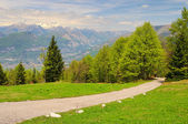 Monte Baldo 09 — Stock Photo