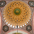 Dome of the Suleymaniye Mosque — Stock Photo