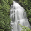 Stock Photo: Cascade of Giessbach Falls