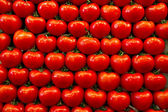 Tomatoes lined up on a street market — Stock Photo