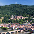Panorama of Heidelberg - Stock Photo