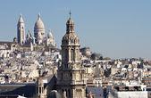 Roofs of Paris — Stock Photo