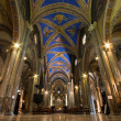 Nave of Santa Maria sopra Minerva — Stock Photo