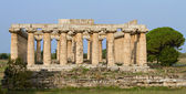 Ancient greek Basilica Temple — Stock Photo