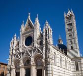 Romanesque cathedral of Siena — Stock Photo