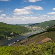 Panorama of the Rhine Valley — Stock Photo