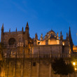 Cathedral of Seville at sunset — Stock Photo