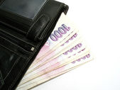 Purse with czech banknotes — Stock Photo