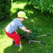 Little boy on the garden - Stock Photo