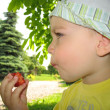 Royalty-Free Stock Photo: Little boy eating strawberry