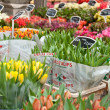 Tulips on sale — Stockfoto #10187563