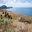 Easternmost point of Madeira — Stock Photo