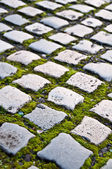Cobblestone road — Stockfoto