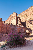 Starověké město petra — Stock fotografie
