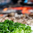 Royalty-Free Stock Photo: Greens, chopped fennel and onion, the background is lit a fire