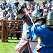 Medieval knights in battle - Stock Photo