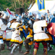 Stock Photo: Medieval knights in battle
