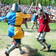 Medieval knights in battle — Stock Photo #10551930