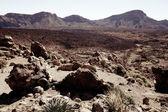 Desert landscape on Tenerife — Stock Photo