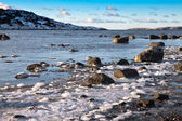 Seascape in winter — Stock Photo