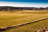 Farmland in Sweden — Stock Photo