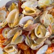 Stock Photo: Boiled clams