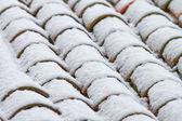 Pannendak met sneeuw — Stockfoto
